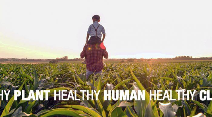 Healthy?